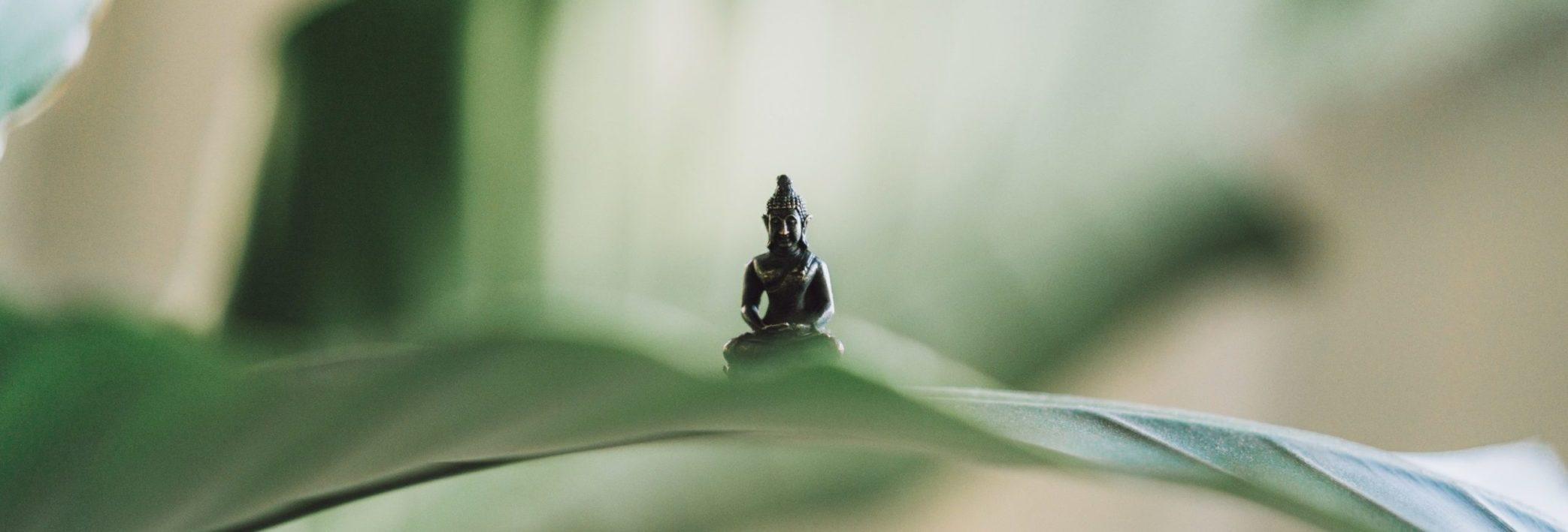 Nosaltres Yoga Lavapiés